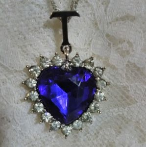 Jewelry - New White Gold Plated Heart of the Ocean Necklace